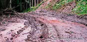 Gesucht: Motocross-Fahrer heizen durch den Wald