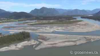 Fraser River under threat