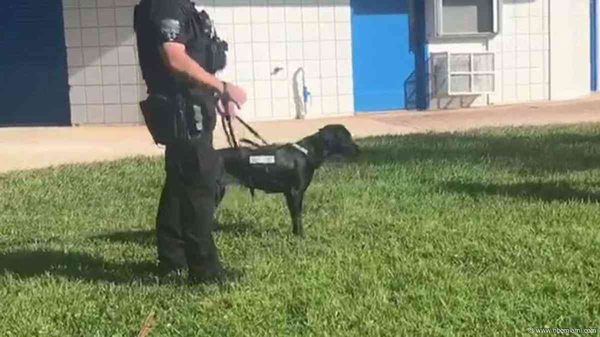 New K-9 Dog Taking Over at Schools in Coconut Creek