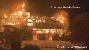 Massive blaze destroys historic barn in Mount Albert