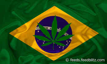 Brazil Joins Colombia, Uruguay in Regulating Medical Cannabis