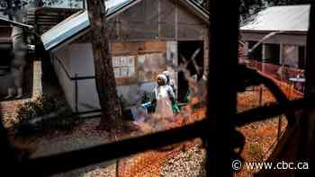Violence against health workers complicating measles outbreak in Ebola-ravaged Congo