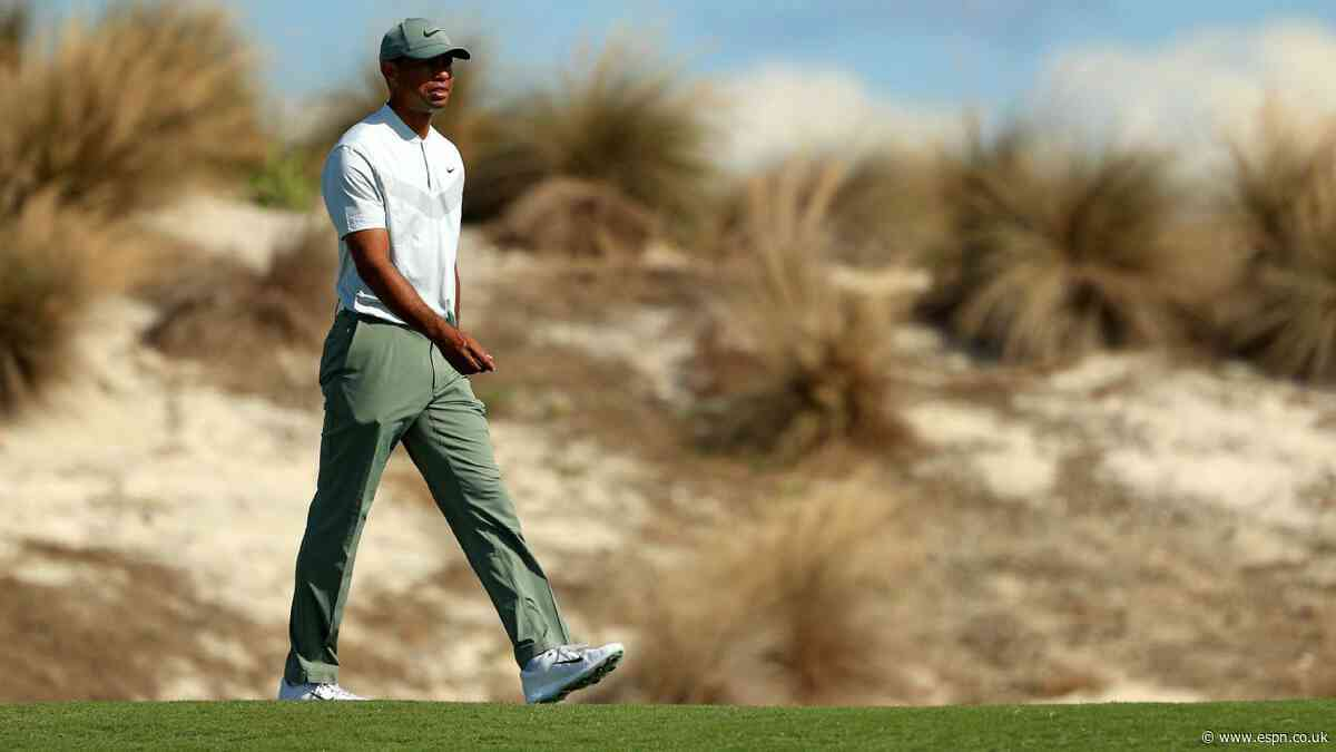 Thanks to Tiger and Captain America, the Hero World Challenge has plenty of intrigue