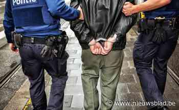 Politie kan drie verdachten van hele reeks diefstallen oppakken