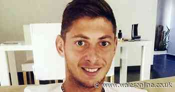 Cardiff City appeal against paying £5.3m Emiliano Sala transfer fee to be heard in spring 2020