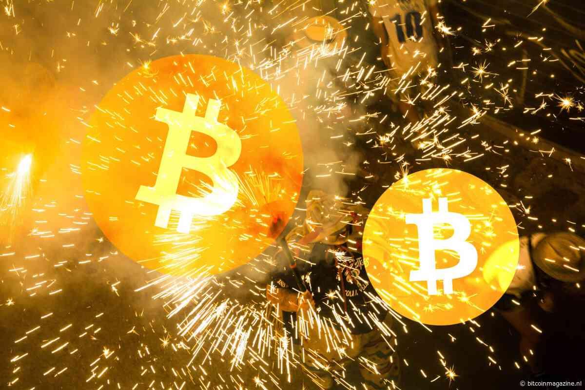 'Bitcoin koers gaat óóit naar $100.000 of meer', aldus Peter Brandt