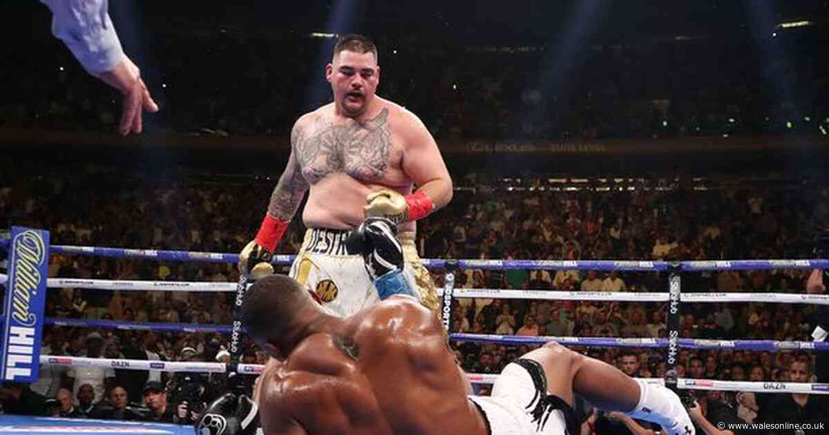 Anthony Joshua v Andy Ruiz Jr 2: preview, ring walk, TV channel and betting odds