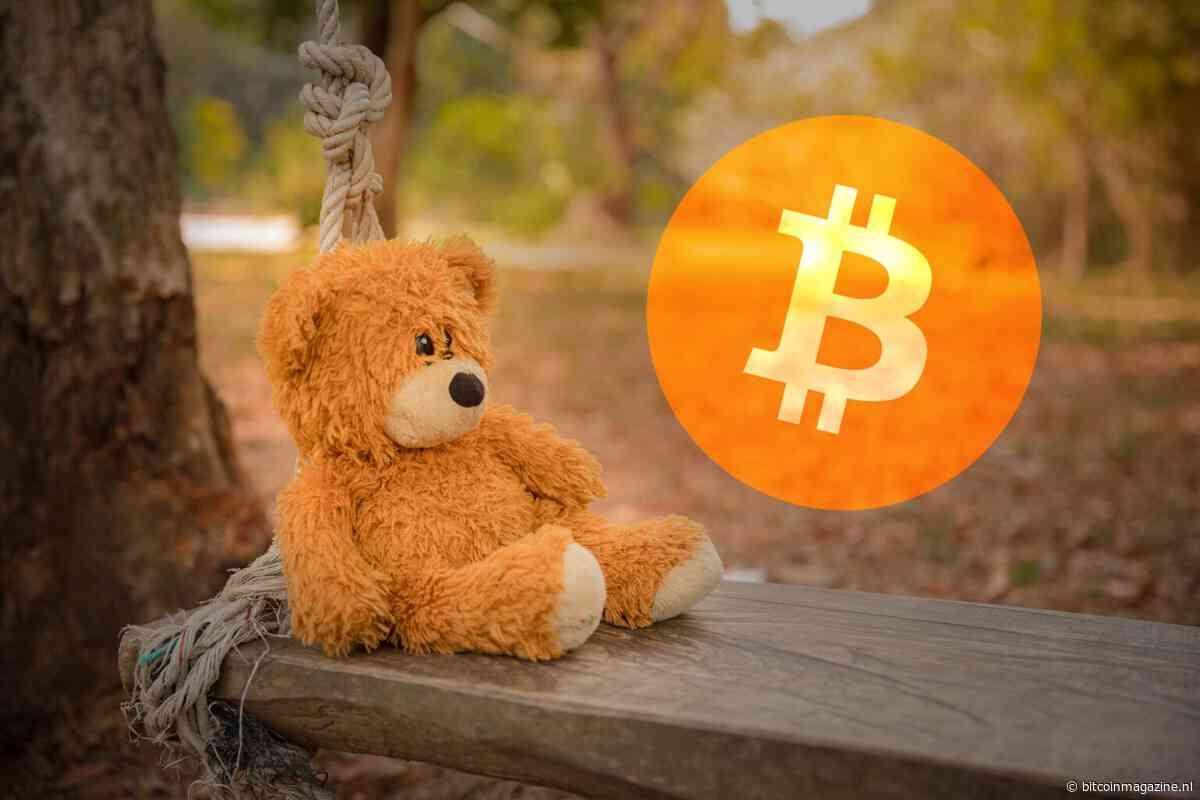 Houdt de bitcoin (BTC) koers stand bij $7.000 of gaan we dippen?
