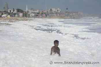 Pollution hits Chennai's famous Marina beach! Foam appears in water, NGT seeks report