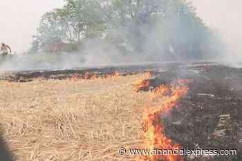 Sensors will be installed to detect stubble burning in West Bengal
