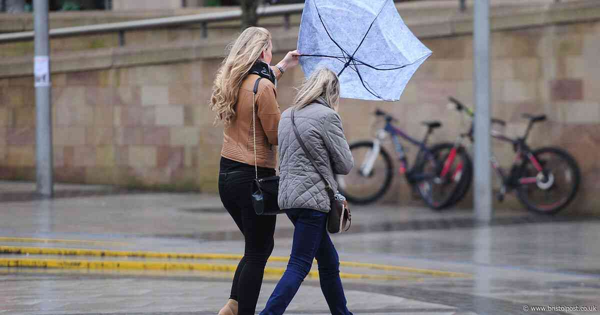 UK weather: Met Office issue wind warning for this weekend - what to expect