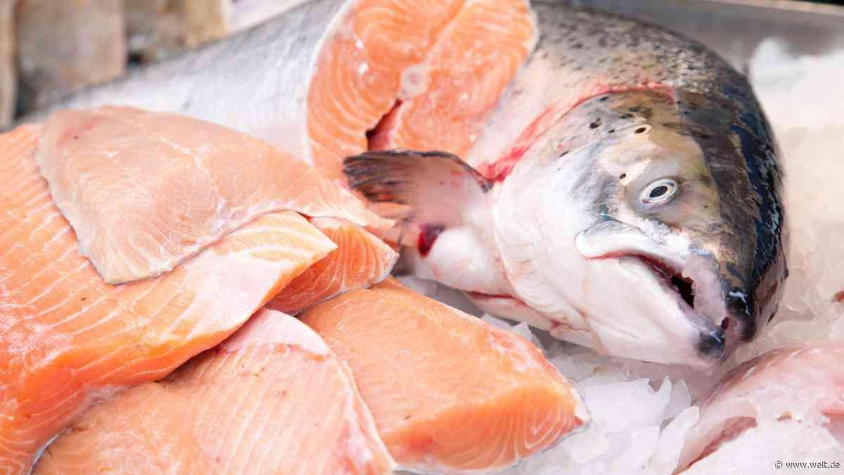 Was das Zuchtfisch-Siegel über Lachs, Pangasius und Co. verschweigt