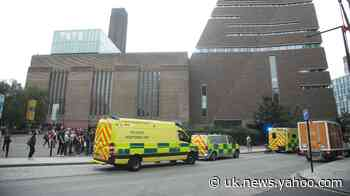 Teenager pleads guilty to attempted murder after throwing boy from Tate balcony