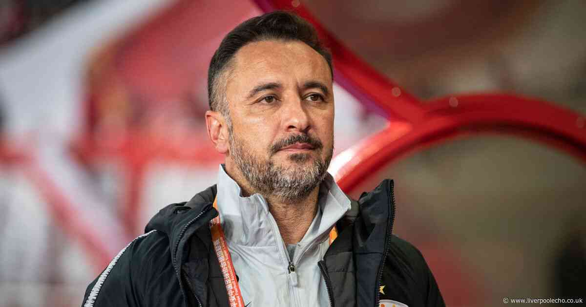 Former Premier League defender gives lowdown on Vitor Pereira amid Everton manager links