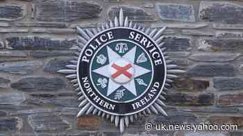 31 dogs rescued by police in Co Tyrone