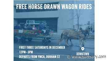Fun family seasonal activities in downtown Sudbury in December