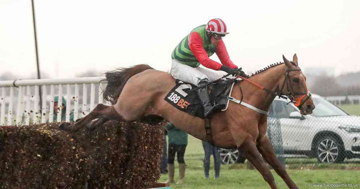Horse Power: Definitly Red can win the Becher Chase at Aintree Racecourse