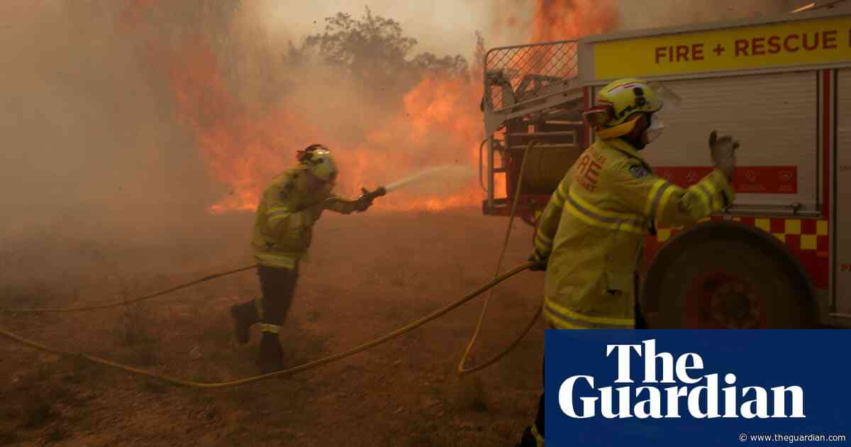 Leading scientists condemn political inaction on climate change as Australia 'literally burns'