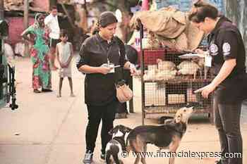 Shortage of anti-rabies injections in Delhi! HC directs govt to provide ARV vaccines to all govt hospitals