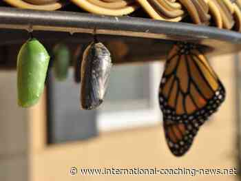 The Art of Coaching for Personal Transformation