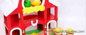 Thetford Mines : suspects recherchés pour le vol d'un jouet pour enfants de 25$