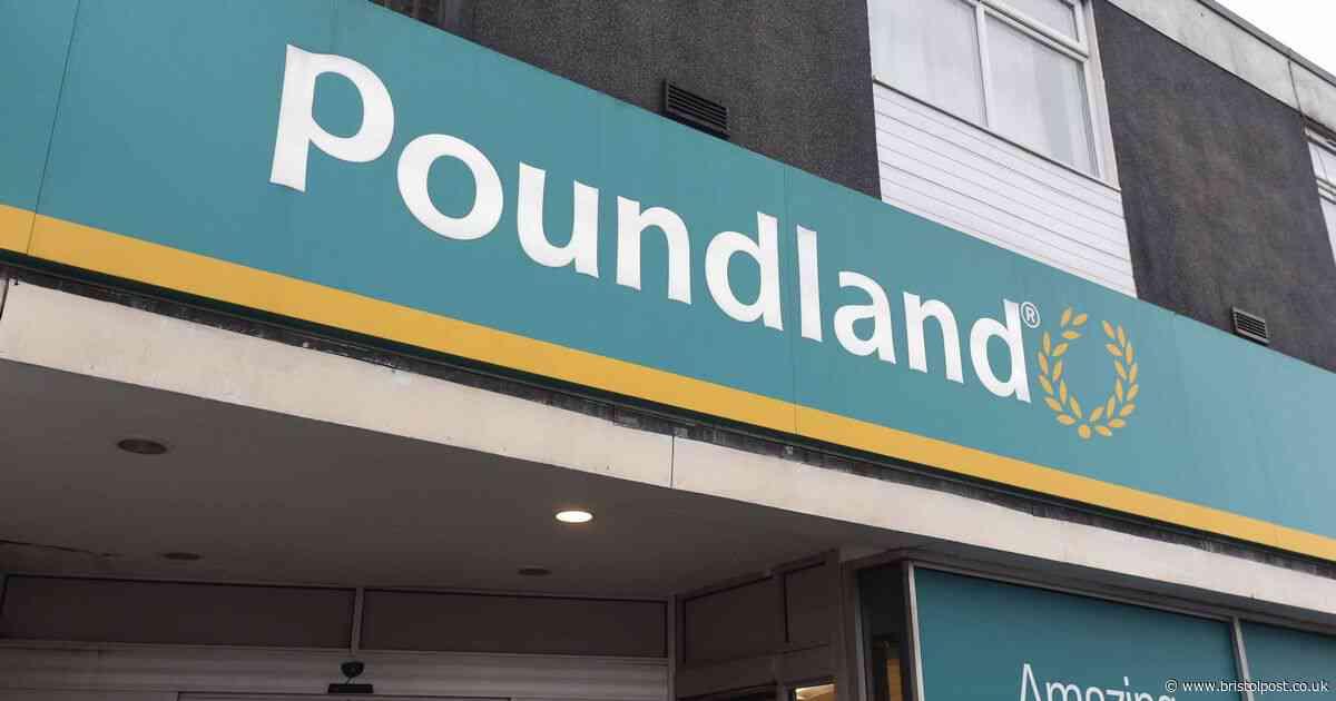 Poundland shoppers divided over crude Christmas advert