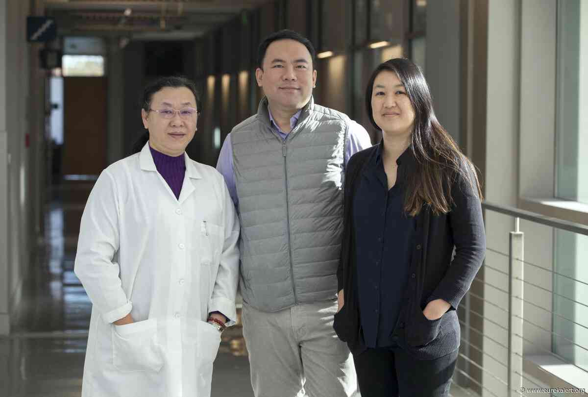 The next step in organ transplants: New startup takes aim at reperfusion injury