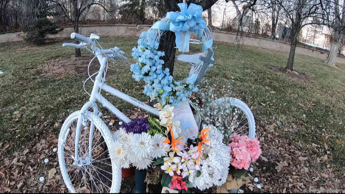 'Protected Bike Lanes- Critical': Cycling Community Talks Safety After Mother Killed