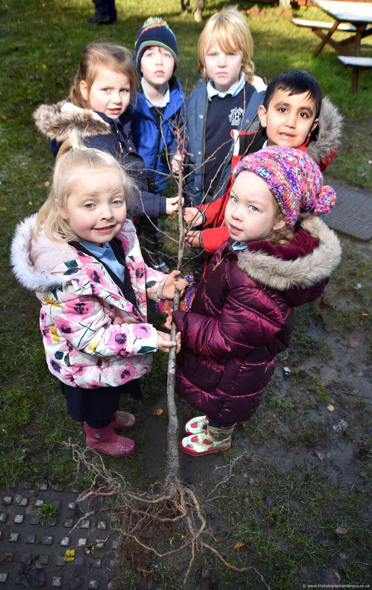 Hoyle Court Primary pupils lay down roots as part of tree planting scheme