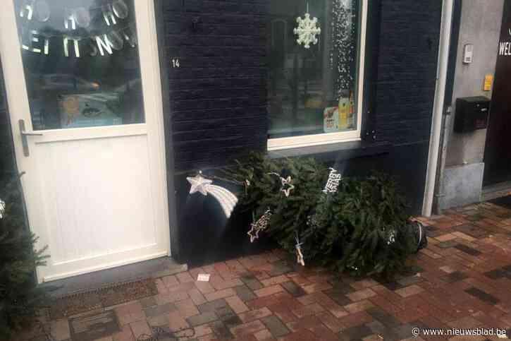 Vandalen houden niet van Kerstmis in 't Tonneke
