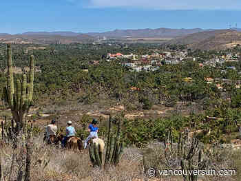 Baja beyond Los Cabos where nature and adventure reign