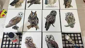 Self-taught artist paints the 7 owl species found, but not easy to see, in province