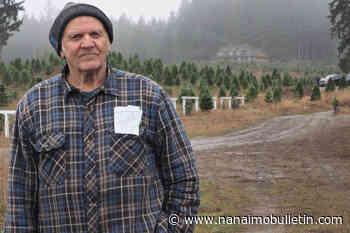 Gogo's tree farm celebrates 90th year of growing Christmas trees