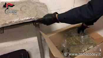 VIDEO | Gran bazar della droga in casa, arrestato studente al Tiburtino