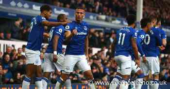 Everton's Mr. Reliable leads by example and continues to defy stereotypes to justify Duncan Ferguson faith