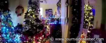 Folie de Noël : une maison, 350 sapins, 42 000 ornements et des milliers de lumières