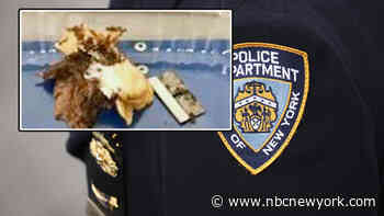 Cop's Razor Blade Sandwich Mishap Was an Accident: NYPD
