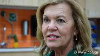 Ottawa Health Team model will improve patient care, minister pledges