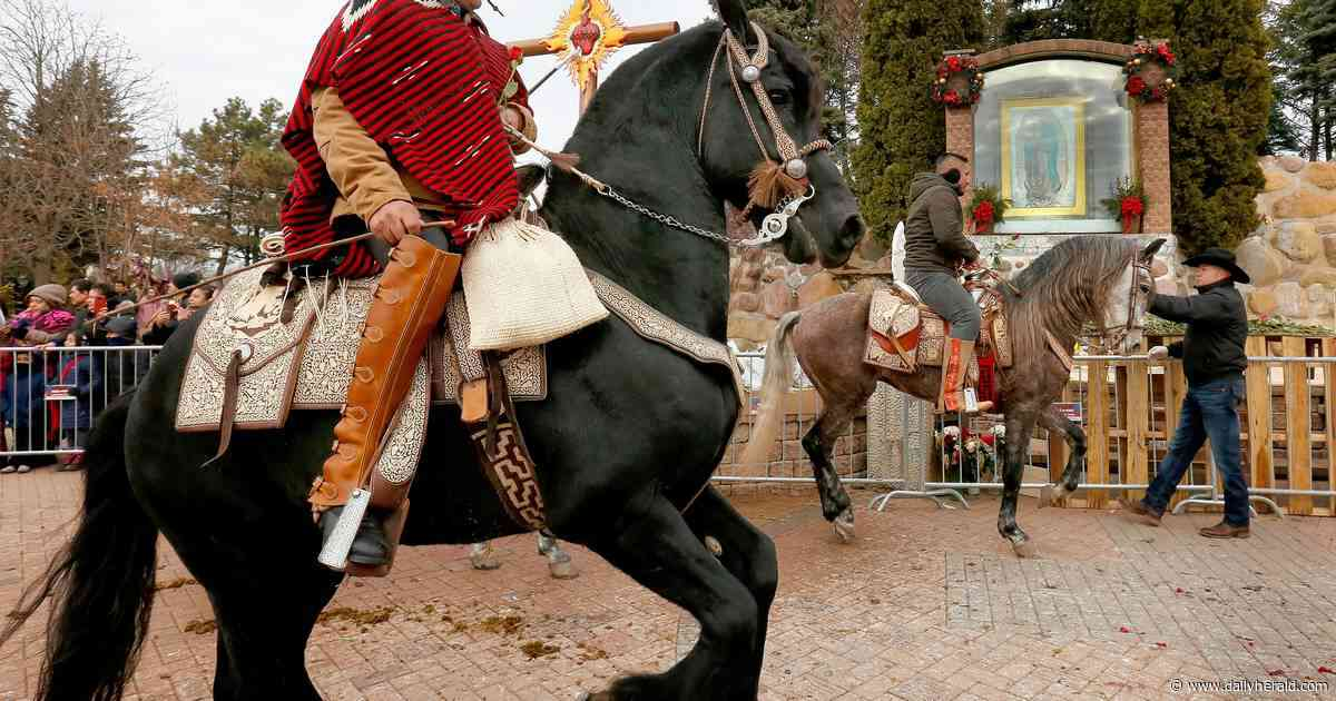 Horseback, trailer pilgrimage honors Our Lady of Guadalupe