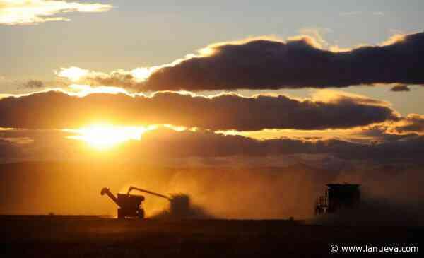 Retenciones a las exportaciones: cuando el destino es tan importante como el camino