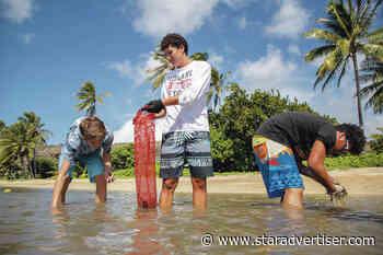'Iolani literature students clear limu from Maunalua Bay