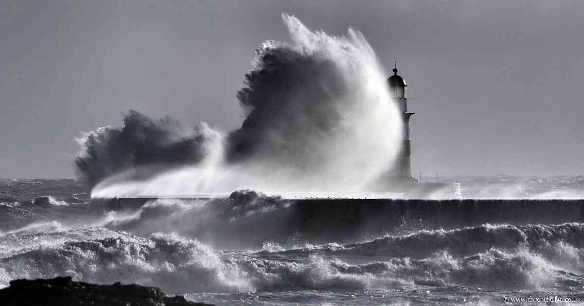 Gale force winds blow into the North East with more wet and very windy weather on the way