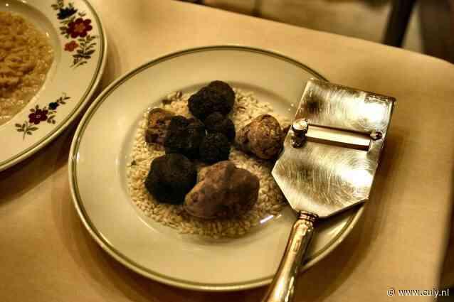 Witte en zwarte truffels: dit is wat je erover moet weten