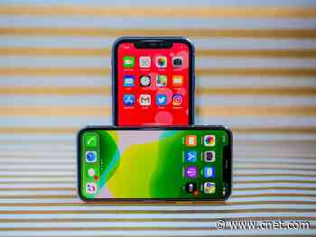 iPhone 11 and 11 Pro, 2 months later: The ultrawide camera is still our favorite thing     - CNET