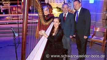 Calw: Musikschule besitzt nun eine eigene Konzertharfe