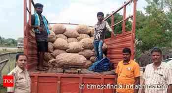 5 held for plotting onion-laden truck's accident