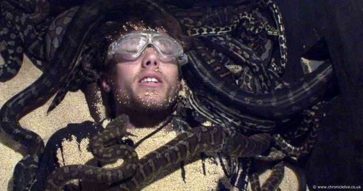 I'm A Celebrity viewers horrified by Roman Kemp's final trial with 56 snakes