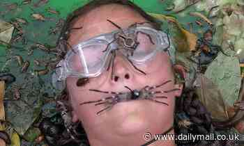 I'm A Celebrity: Jacqueline Jossa has to hold a Huntsman spider in her MOUTH for last EVER trial
