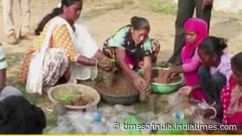 Forest dept reuses waste plastic bottles to plant, grow saplings in Chhattisgarh's Balrampur