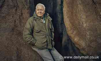 David Attenborough will unearth the hidden world of PLANTS in his next documentary series